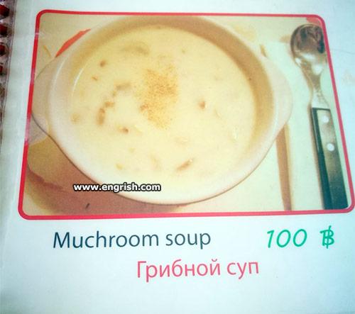 muchroom soup